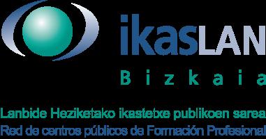 GizaLEADER - Programa de refuerzo de las Competencias Transversales  y de impulso del Liderazgo para el desarrollo profesional en la FP